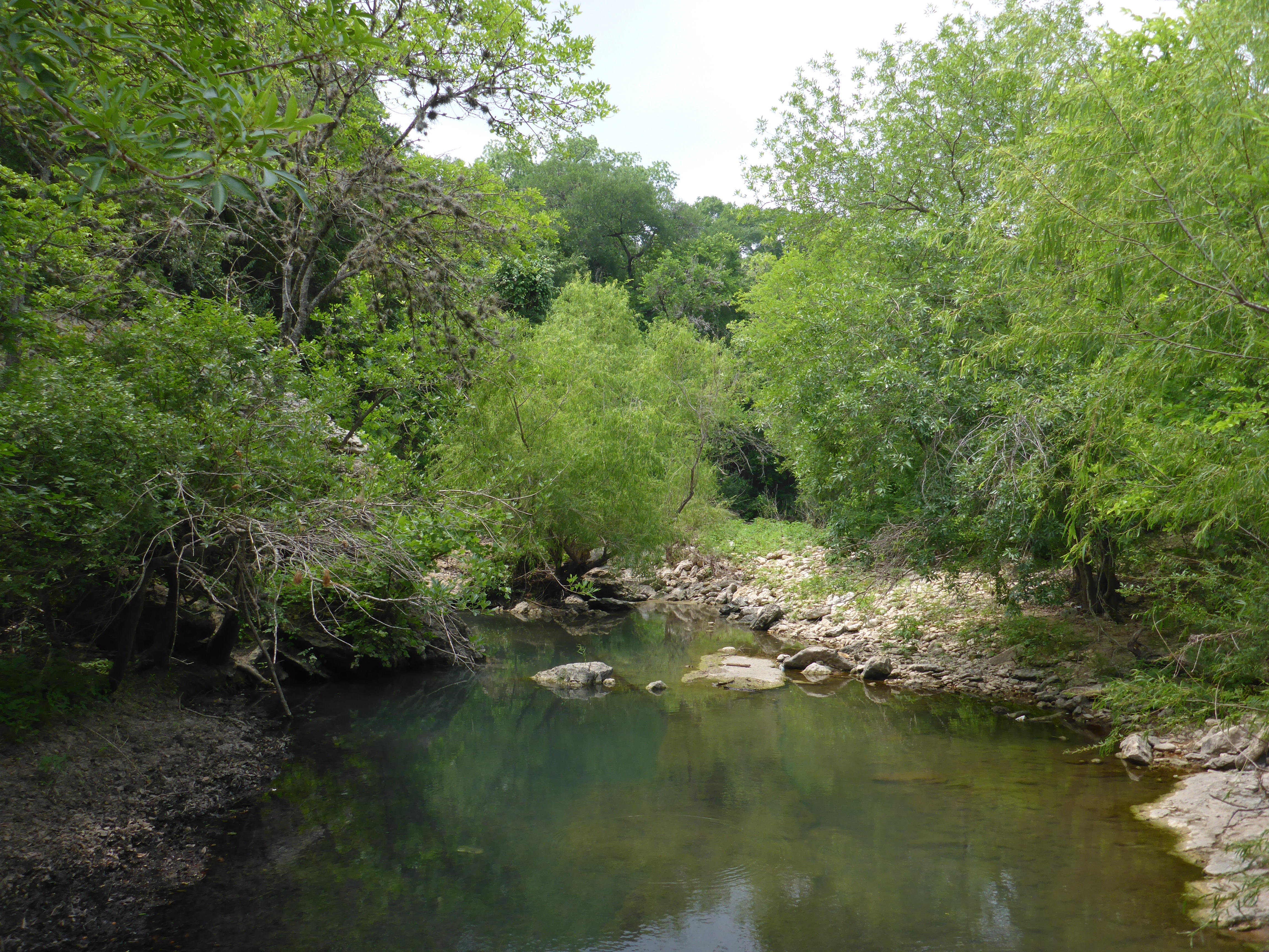 Greenbelt earthrobert for Shoal creek